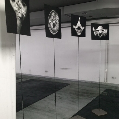 4_IN-THE-EYE-OF-THE-BEHOLDER-Etching-on-Paper,-Metall,-Wood-each-print-approx-28x38cm,-installation-420cm-diameter