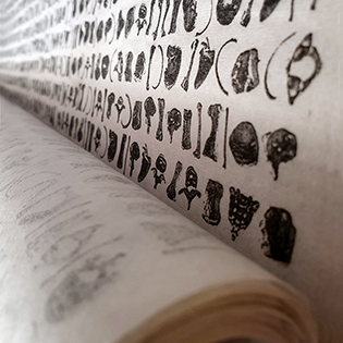 Script / Code / The Writing is on the Wall
